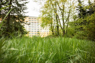 Sozialer Wohnungsbau in Chemnitz