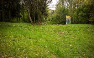 Naturnahe_Grünflächen_5